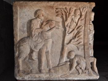 entrée à Jérusalem, sarcophage, cathédrale de Clermont